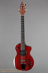 Rick Turner Model 1 CP-LB Lindsey Buckingham NEW