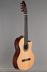 Kremona Guitar Fiesta F65CW-7 NEW Image 2