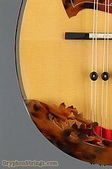 2011 Calace Mandolin Type 15 Image 13