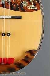 2011 Calace Mandolin Type 15 Image 14