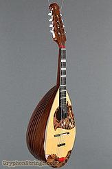 2011 Calace Mandolin Type 15 Image 2