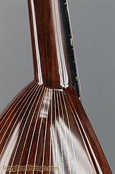2011 Calace Mandolin Type 15 Image 29