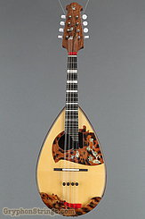 2011 Calace Mandolin Type 15 Image 9