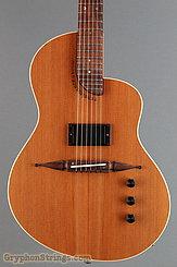 Rick Turner Guitar Renaissance RS6 Deuce NEW Image 10