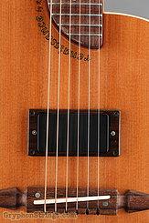 Rick Turner Guitar Renaissance RS6 Deuce NEW Image 11