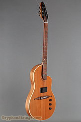 Rick Turner Guitar Renaissance RS6 Deuce NEW Image 2