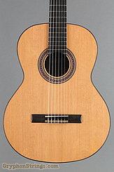 2014 Kremona Guitar Solea SA-C Image 10