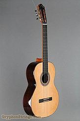 2014 Kremona Guitar Solea SA-C Image 2