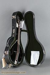Collings Mandolin MT, Jet Black gloss top, Ivoroid Binding Mandolin NEW Image 17