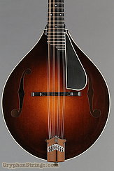 Collings Mandolin MT, Gloss top, Ivoroid Binding, pickguard NEW Image 10
