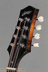 Collings Mandolin MT, Gloss top, Ivoroid Binding, pickguard NEW Image 13