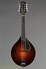 Collings Mandolin MT, Gloss top, Ivoroid Binding, pickguard NEW Image 9