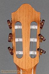 Kremona Guitar Fiesta FC NEW Image 15