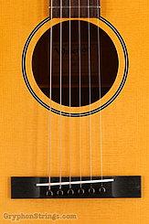 Waterloo  Guitar WL-K NEW Image 11