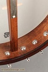 "Bart Reiter Banjo Buckbee, 11"", Mahogany Neck, Fretless NEW Image 13"