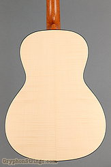 Waterloo Guitar WL-14 Scissortail NEW Image 12