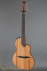 Rick Turner Guitar RN6 Standard Hybrid  NEW