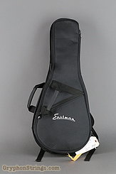 Eastman Mandolin MD304 NEW Image 16