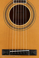 Waterloo Guitar WL-S DELUXE NEW Image 11