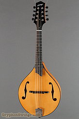 Collings Mandolin MT NEW Image 1