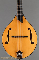 Collings Mandolin MT NEW Image 10