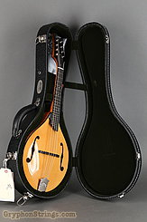 Collings Mandolin MT NEW Image 17