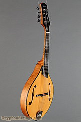 Collings Mandolin MT NEW Image 2