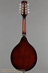 2002 Steve Andersen Mandolin A model oval soundhole Image 5