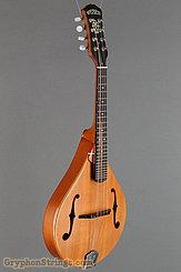 2005 Weber Mandolin Hyalite Image 2