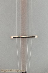 "Bart Reiter Banjo Buckbee, 12"", Mahogany neck, Fretless NEW Image 11"