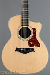 Taylor Guitar 254ce-DLX NEW Image 10