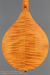 2012 Collings Mandolin MT Amber Image 12