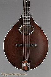 Collings Mandolin MT O, Sheraton Brown NEW Image 10
