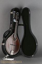Collings Mandolin MT O, Sheraton Brown NEW Image 17