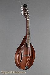Weber Mandolin Gallatin A14-F2 Faded Leather NEW Image 2