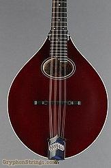 Collings Mandolin MT O, Merlot NEW Image 10