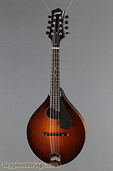 Collings Mandolin MT O, Pickguard Mandolin NEW