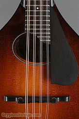 Collings Mandolin MT O, Pickguard Mandolin NEW Image 12