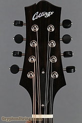Collings Mandolin MT O, Pickguard Mandolin NEW Image 14