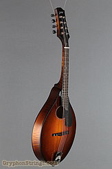 Collings Mandolin MT O, Pickguard Mandolin NEW Image 2
