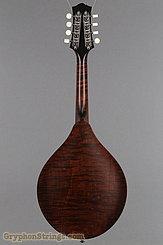 Collings Mandolin MT O, Gloss Sheridan Brown Top, Ivoroid Binding Mandolin NEW Image 5
