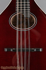 Collings Mandolin MT O, Gloss Merlot Top, Ivoroid Binding NEW Image 11