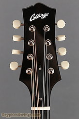 Collings Mandolin MT O, Gloss Merlot Top, Ivoroid Binding NEW Image 13