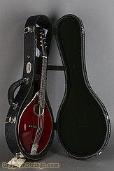 Collings Mandolin MT O, Gloss Merlot Top, Ivoroid Binding NEW Image 17