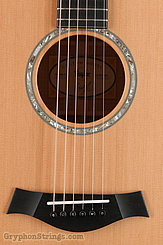 Taylor Guitar Custom GC Cedar/old Maple NEW Image 10