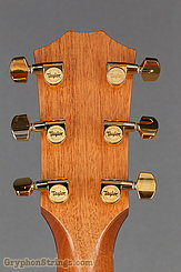 Taylor Guitar Custom GC Cedar/old Maple NEW Image 18