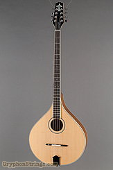 Trinity College Irish Bouzouki TM-375 Irish Bouzouki NEW
