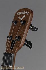 Blackbird Ukulele Farallon EKOA Tenor Ukulele, w/sound port NEW Image 14