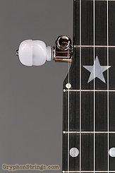 Bart Reiter Banjo Regent 5 String NEW Image 16