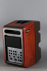 L.R. Baggs Amplifier Synapse NEW Image 2
